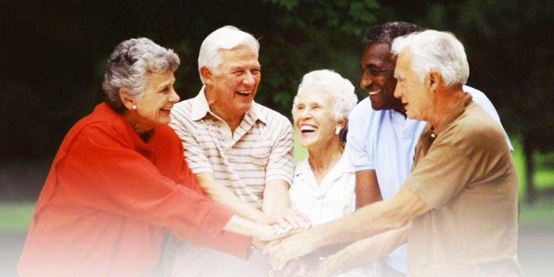 Calmya for arthritis cure