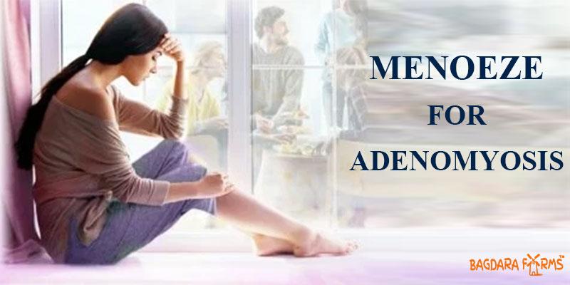 menoeze for Adenomyosis cure