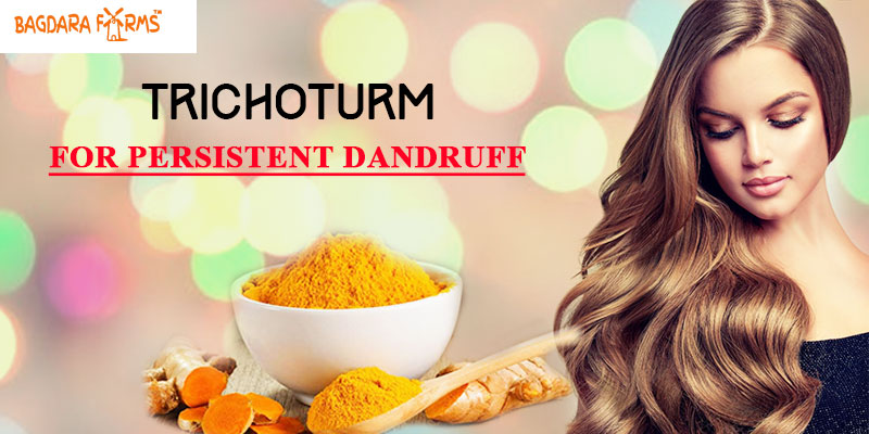 Remove Dandruff The Natural Way With Curcumin