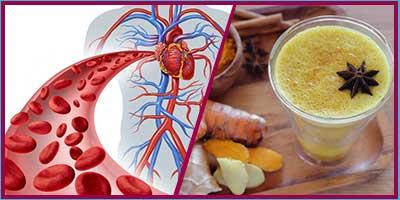 cardiovascular diseases with Curcumin