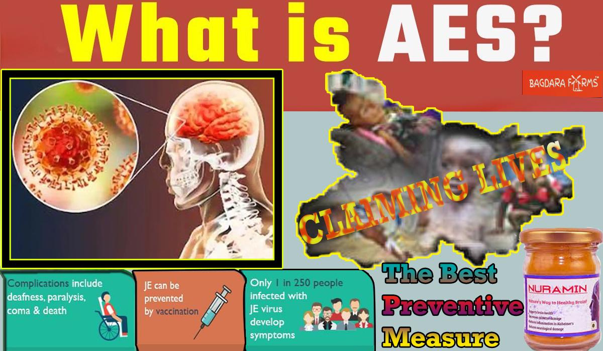 Acute encephalitis syndrome (AES)