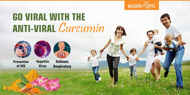 turmeric health benefits , Curcumin , viral fiver , Dengue, Hepatitis B