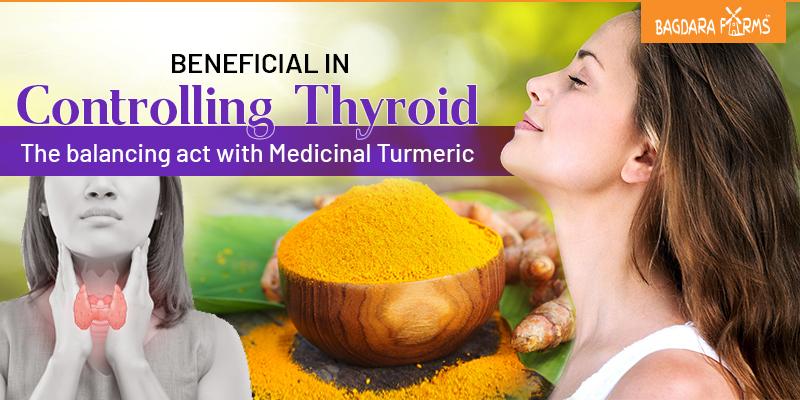 curcumin affect on thyroid , hypothyroidism ,